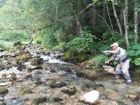 Claude pêche avec la main gauche