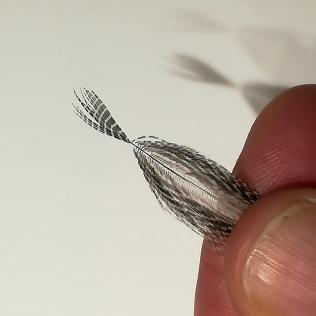 Rabattre les fibres entre vos doigts et fixer la plume par la partie la plus large