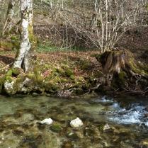ruisseau 2