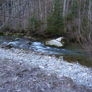 la rivière avec un niveau très bas pour la saison